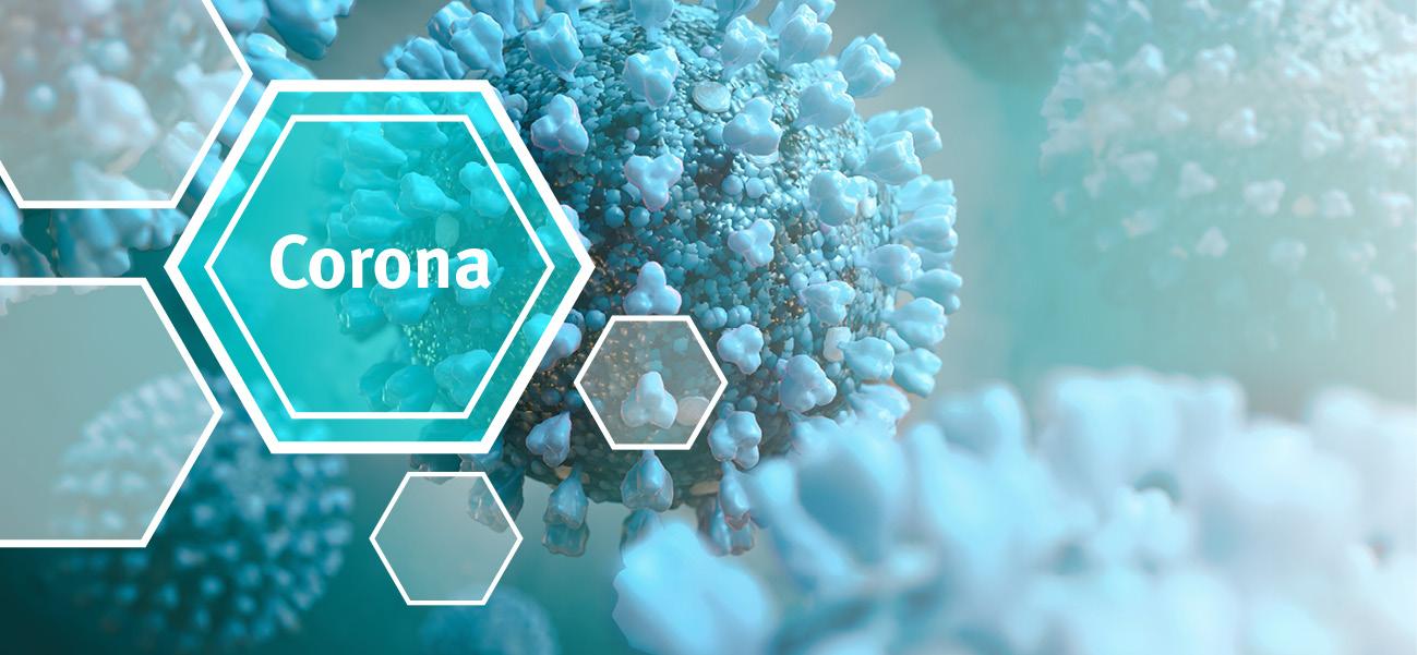 Weltweit breitet sich das neue Coronavirus SARS-CoV-2 aus. Aktuelle Informationen zum Virus sowie zu Präventions- und Bekämpfungsmaßnahmen.